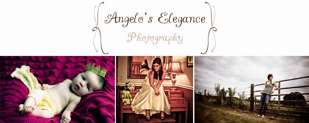 Angelo's Elegance Photography