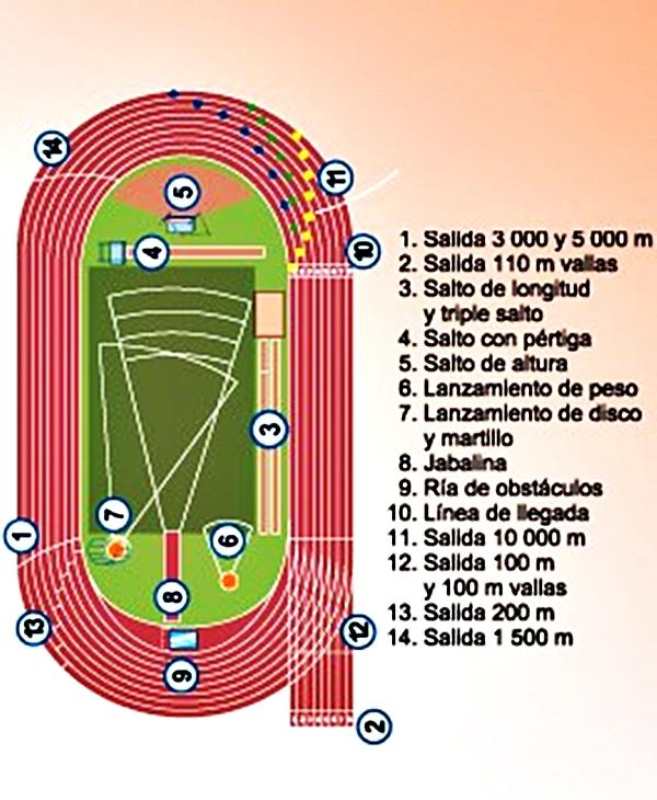 los carriles de una pista de atletismo: