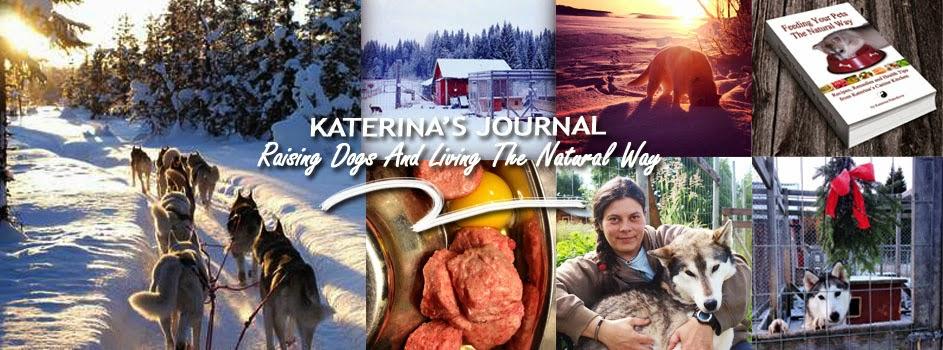 Katerina's Journal