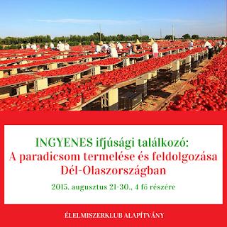 ÉK - Ifjúsági találkozó: A paradicsom termelése és feldolgozása Dél-Olaszországban