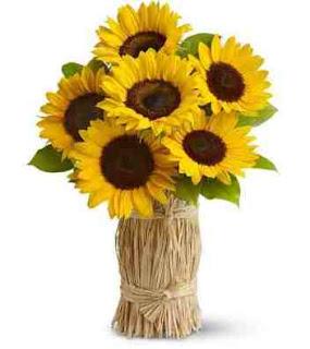 foto gambar bunga matahari dalam vas bunga