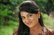 Shruti Photos from Ak Rao Pk Rao Movie-thumbnail-3