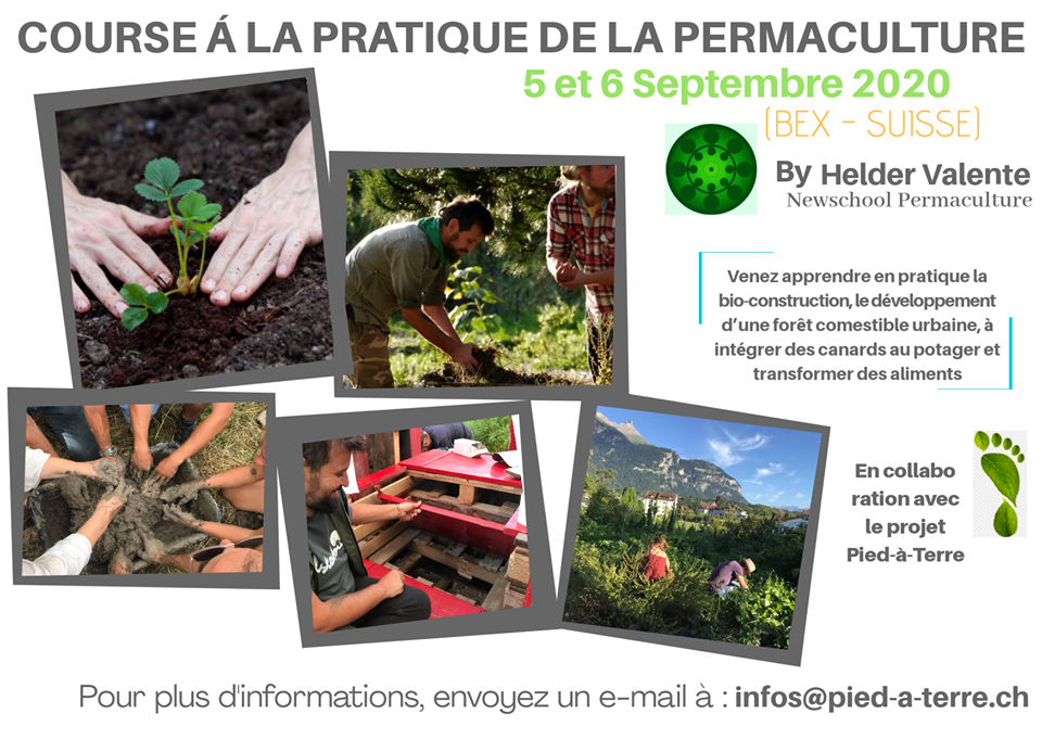 Practical Permaculture Course
