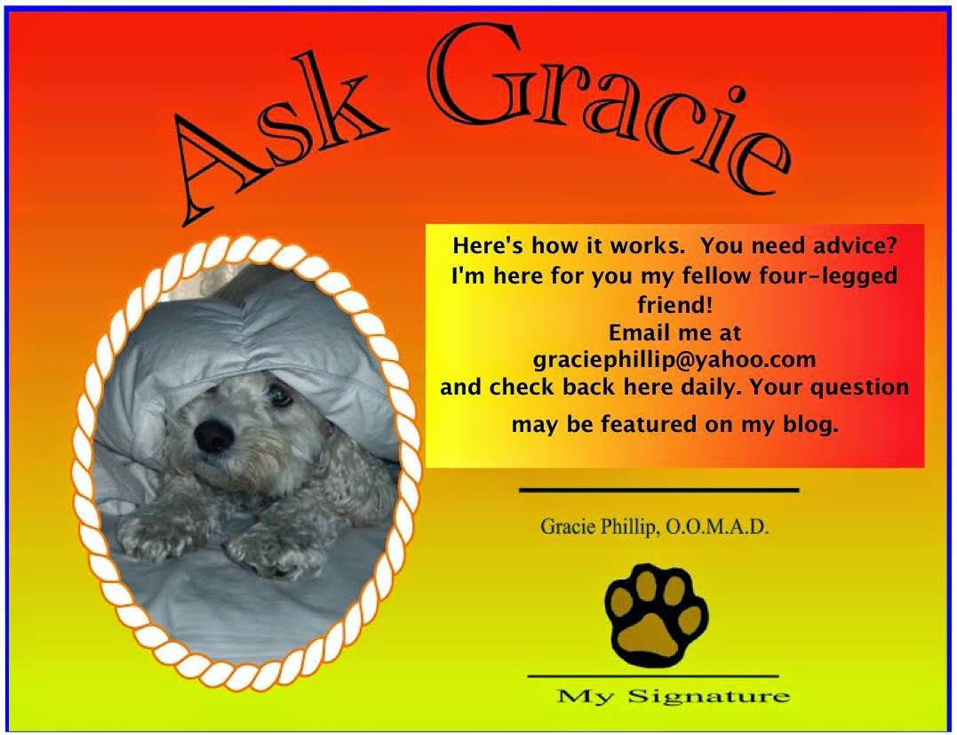 Ask Gracie