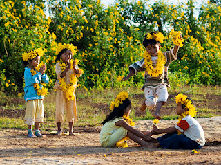 Dalat- the heaven of wild sunflowers1