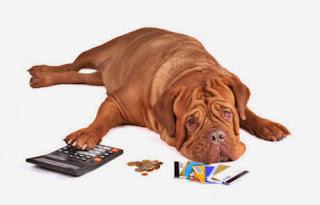 Tips to avoid a debt settlement backfire