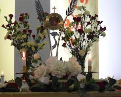 Hình ảnh: Mừng lễ Các Thánh Tử Đạo VN