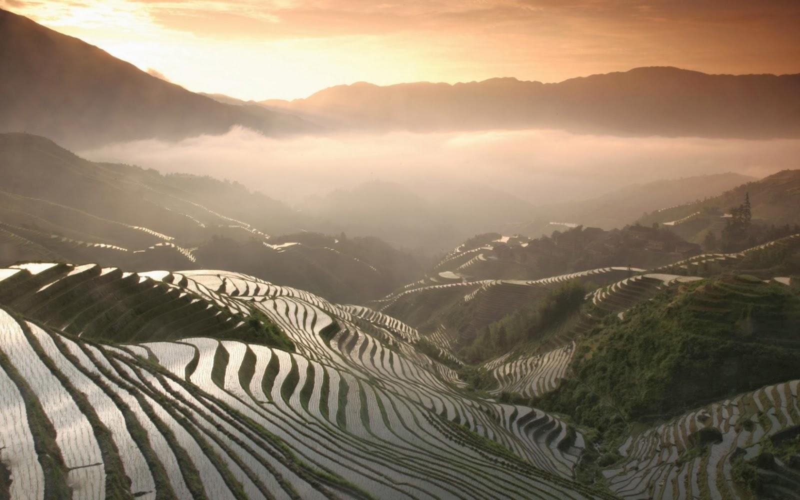 Terrazas de arroz increíble Asia