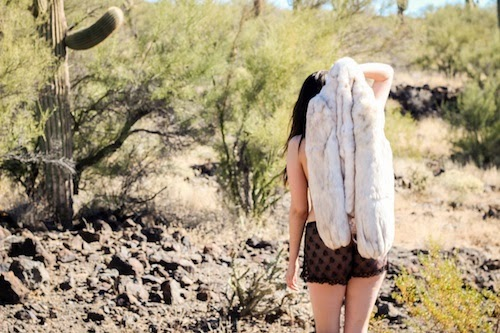 arid explorations, by katie harland