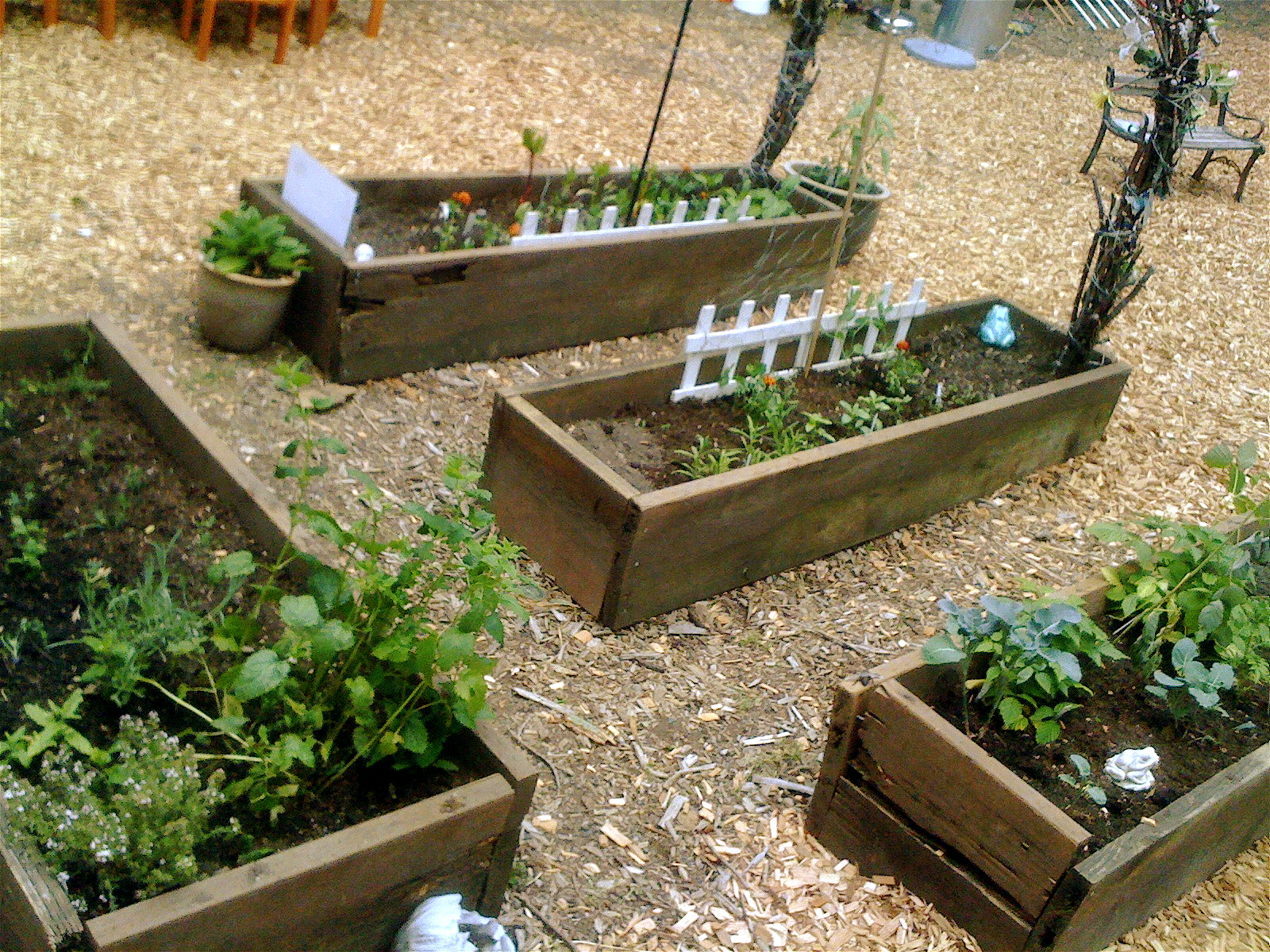 Classroom Garden Ideas ~ Teacher tom our new outdoor classroom