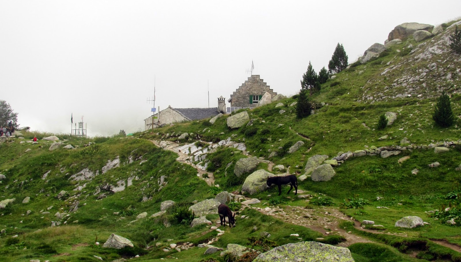 Vistas al refugio de La Renclusa y los burros con niebla