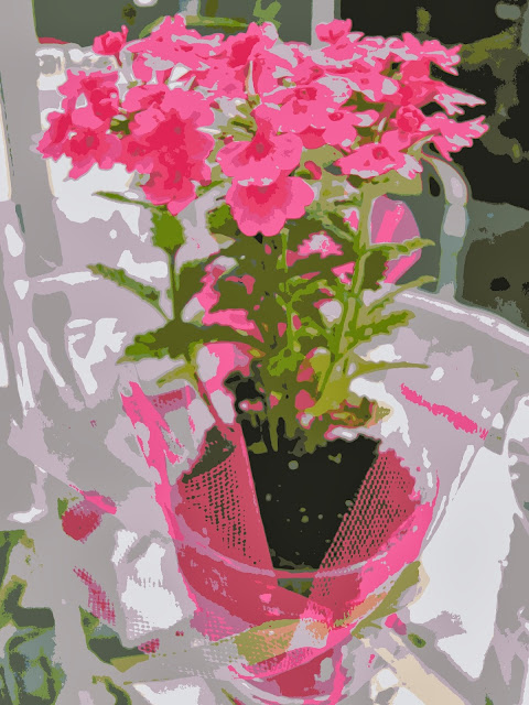 posterized picture for paint by number painting