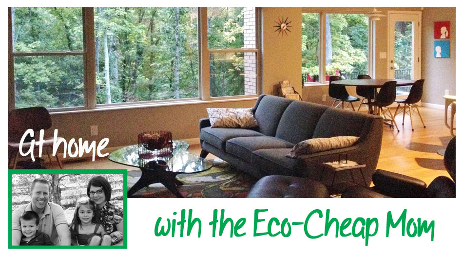 The Eco-Cheap Mom