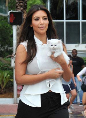 Gambar Kim Kardashian dan kucingnya, Mercy