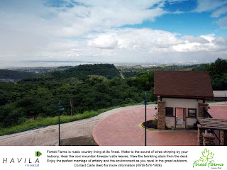 invest in real estate in the Antipolo, Angono, Taytay, Rizal Philippines