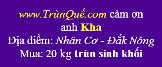 Trùn quế Đắk Nông