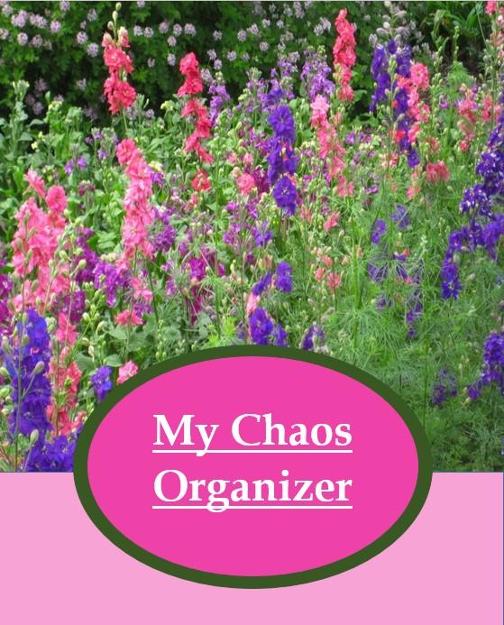 My Chaos Organizer