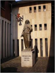 Residencia de la Seu d'Urgell (La punxa)