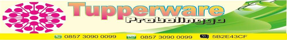 Agen Tupperware Probolinggo