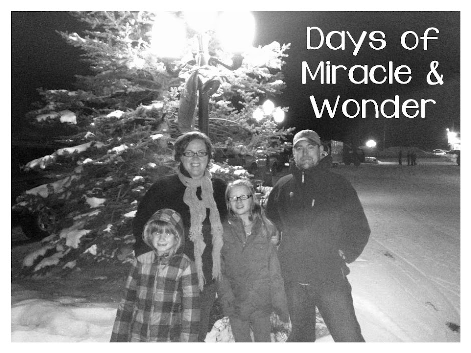 Days of Miracle &amp; Wonder