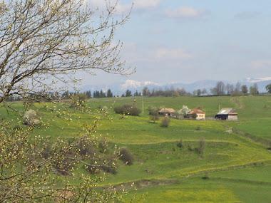 Vedere spre Călimani, primăvara