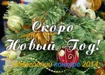 Новогодний конкурс 2014