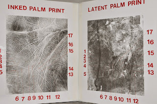 The palm and fingerprint that led to a death penalty conviction.