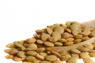 kekacang lentil
