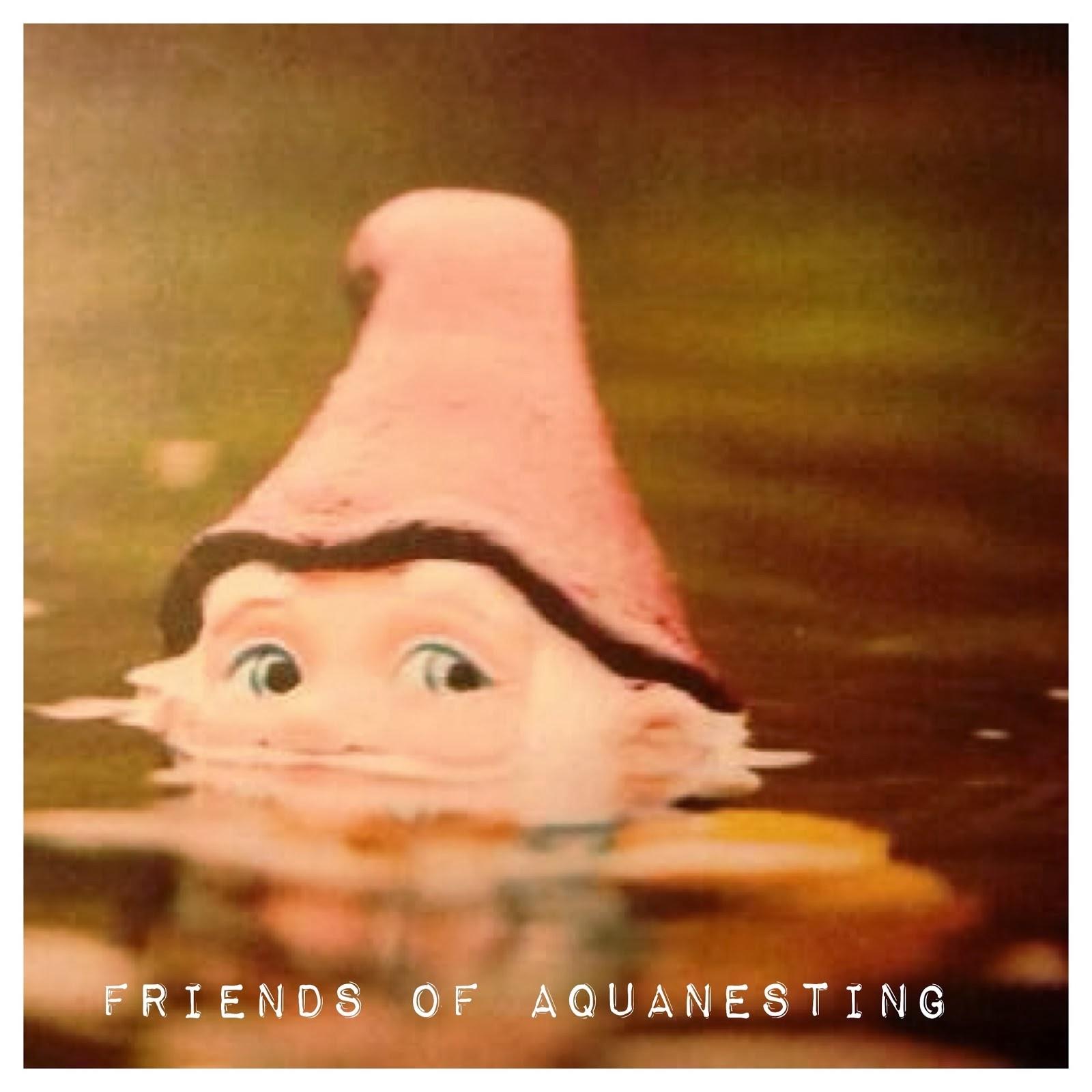 Marzo 2018: Friends of Aquanesting dal 16 al 18 marzo 2018