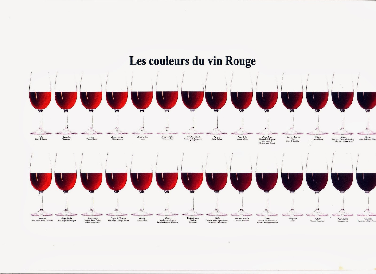 Del vino rosso e del suo invecchiamento