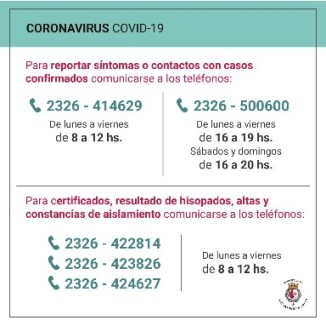 Líneas Covid-19