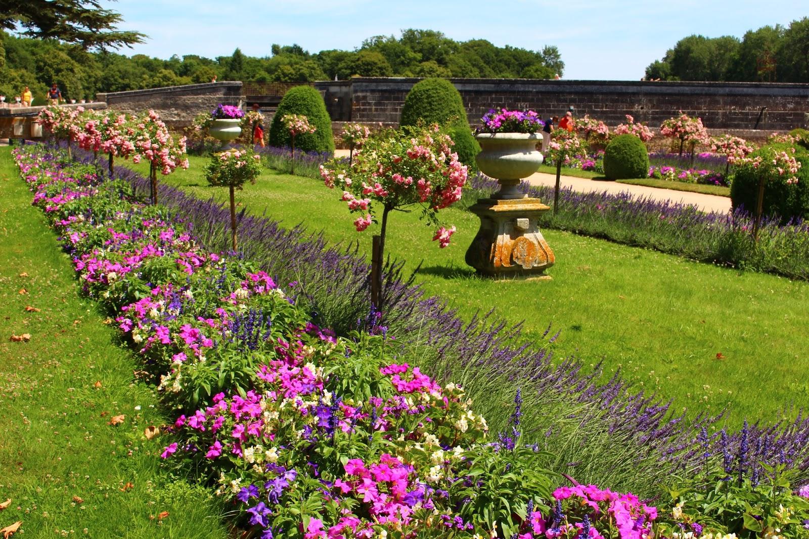 Roses du jardin ch neland jardin de catherine de m dicis for Le jardin de catherine com