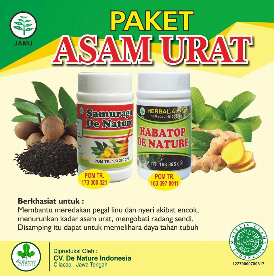Obat Herbal Penyakit Asam Urat De Nature