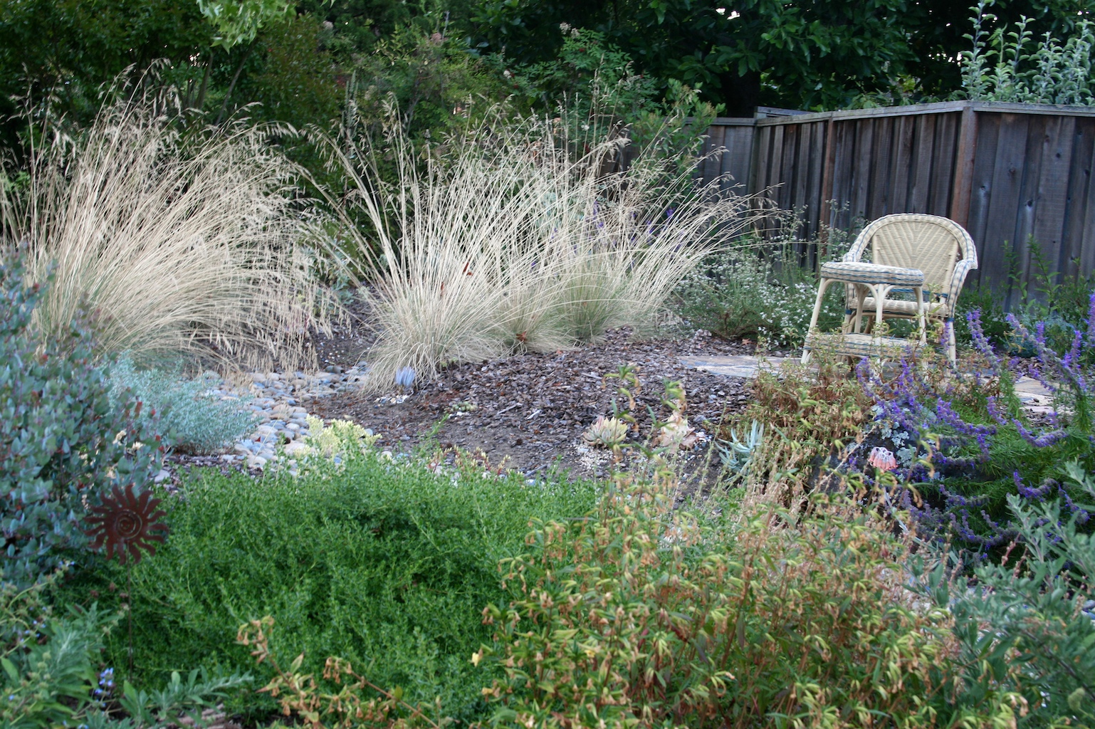 Picture this my garden is my special place for Wild grass gardens