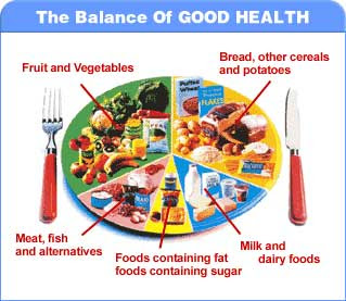 here is a guide on balanced diet a diet which contains all the ...