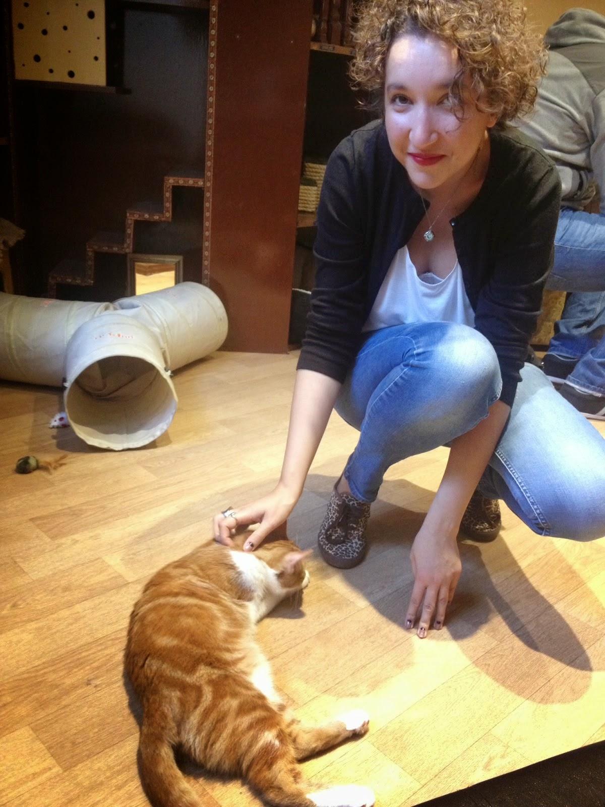 inside london cat cafe