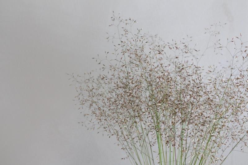 Hennot heinät maljakossa