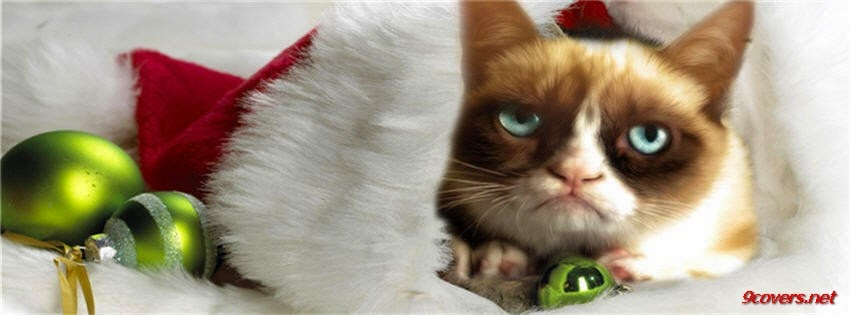 Grumpy Cat Christmas Cover Photo