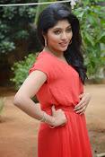 Samyuktha Hornad Glam pics-thumbnail-13