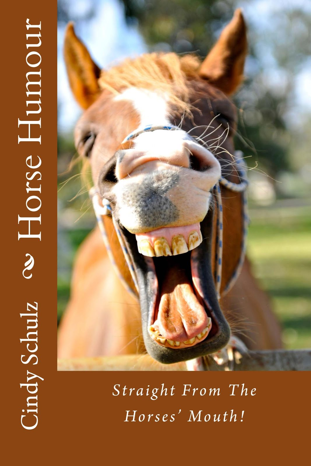 Horse Humour