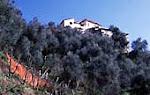 Ferienhaus am Hang des Apennin