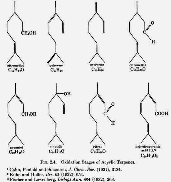Oxidation Stages of Acyclic Terpenes