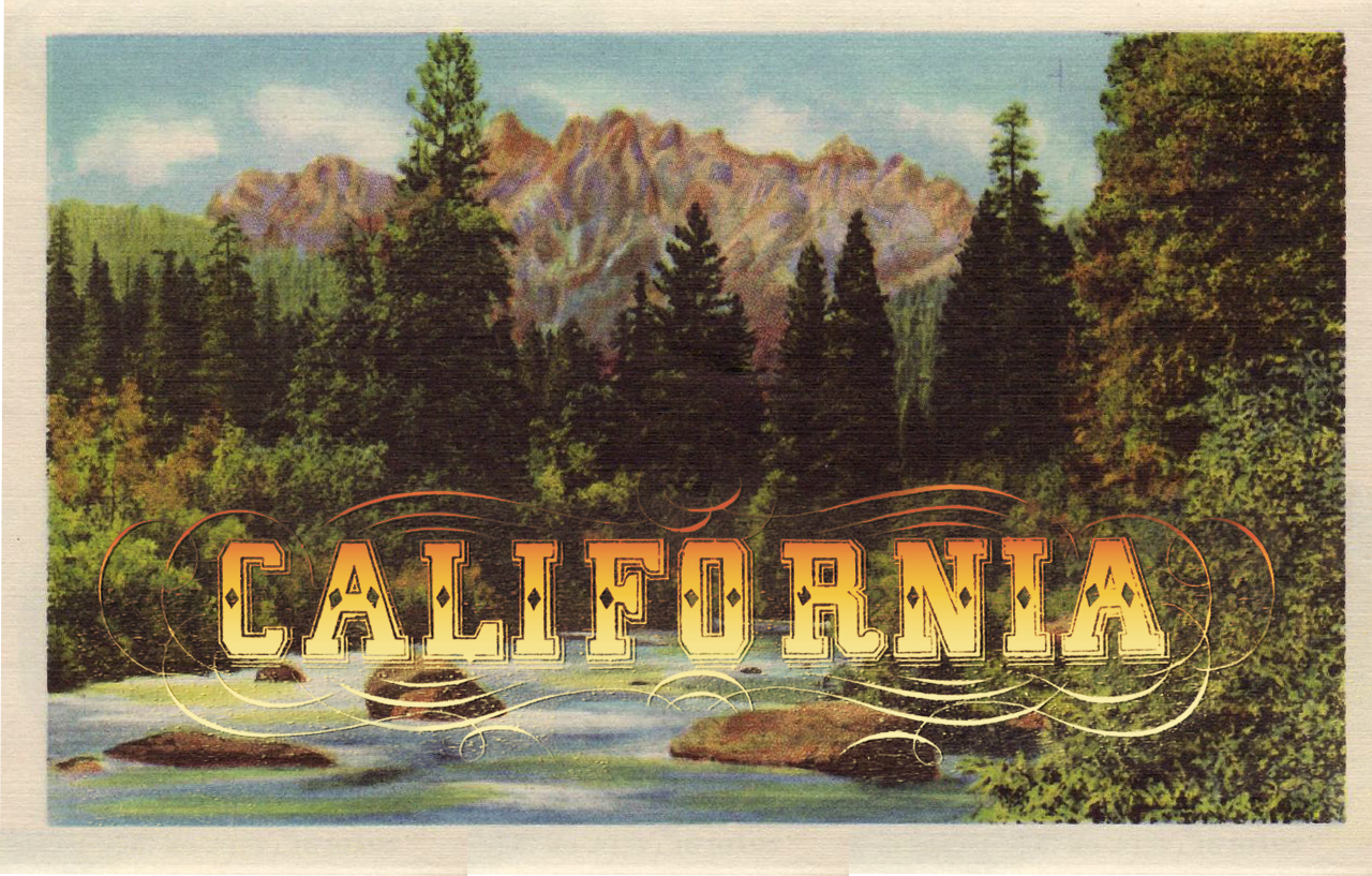 tracy lenihan design blog  california save the date postcards