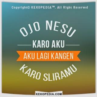 Ojo nesu itu berasal dari bahasa jawa yang artinya jangan marah, ini