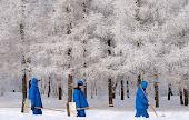 Appunti di viaggio. Lettera-Corrispondenza da San Pietroburgo. Mercato di vacche