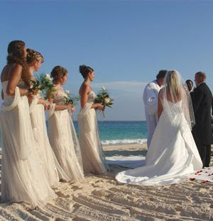 All About The Wedding Celebration Beach Wedding Ideas
