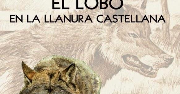 El pernil libro el lobo en la llanura castellana - Anos luz castellana ...