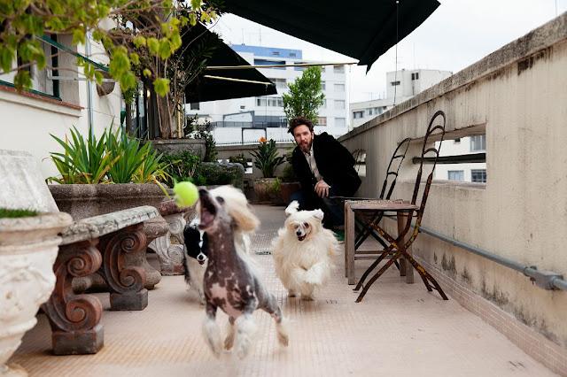 el diseñador jugando con sus perros