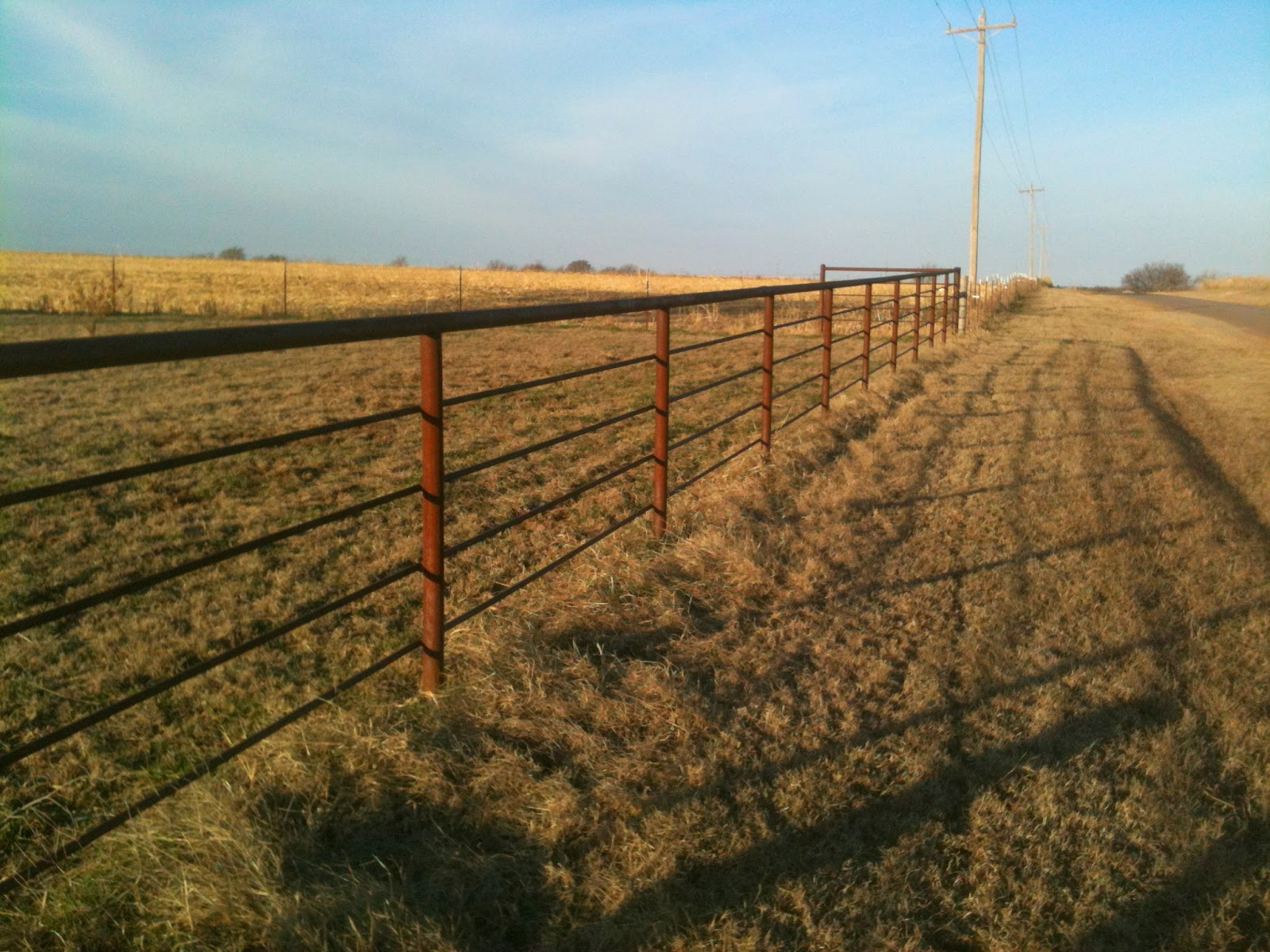 Watch out for the bull building pipe fence simple