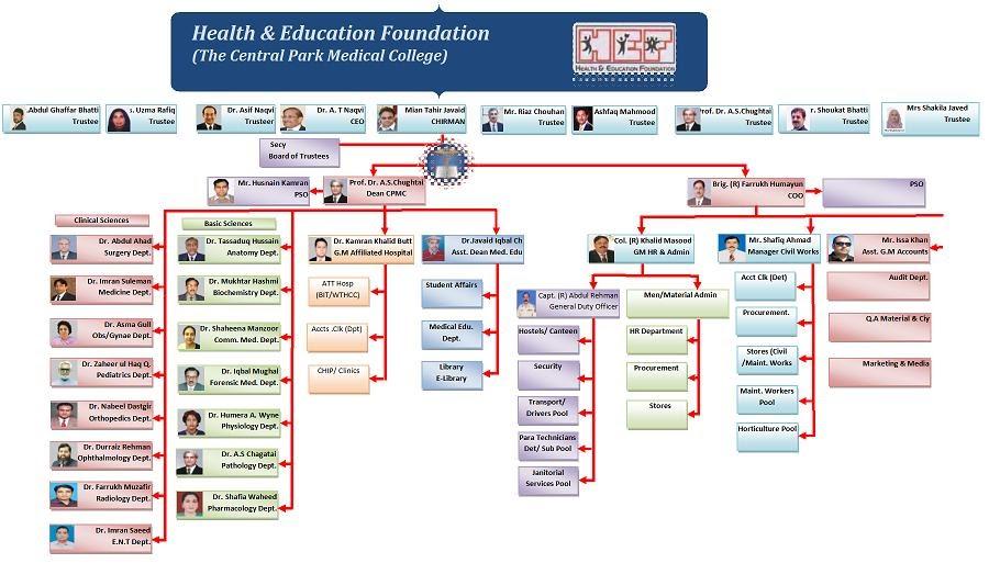 Health Education Foundation Pakistan Organogram Central Park - Organogram template